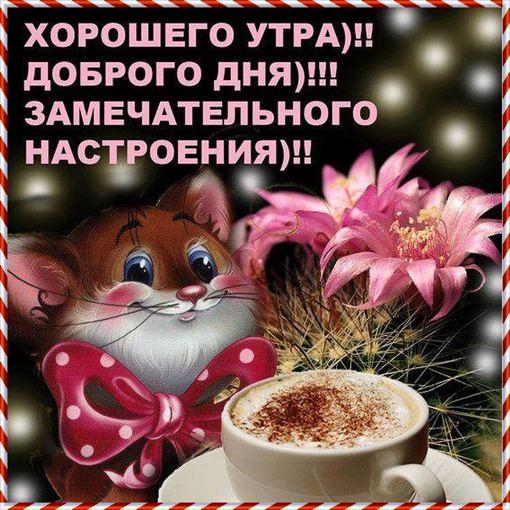 Утра доброго и прекрасного дня