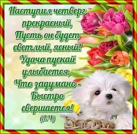 Пожелание доброго четверга