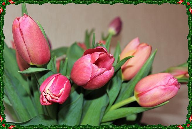 Поздравить с 8 марта жену
