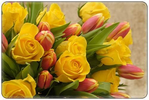 Изображение - Поздравления знакомому с днем рождения в прозе pozdravit-znakomuyu-s-dnem-rozhdeniya-v-proze-3