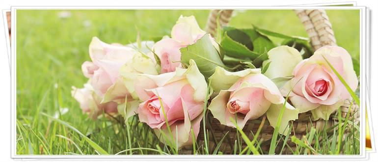Изображение - Поздравления знакомому с днем рождения в прозе pozdravit-znakomuyu-s-dnem-rozhdeniya-v-proze