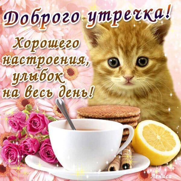 Красивые картинки доброе утро, хорошего дня